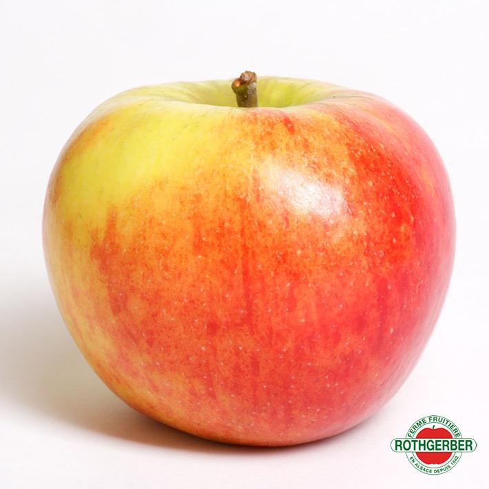 Pomme Elstar Ferme Rothgerber