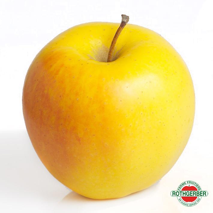 Pomme Golden Ferme Rothgerber