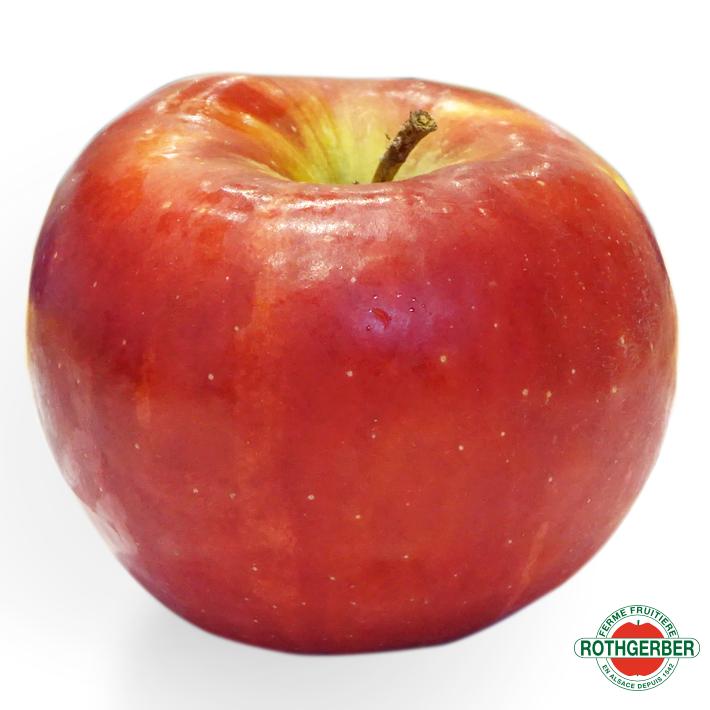 Pomme Rubens Ferme Rothgerber
